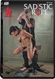 DVD - Pussy Punishment
